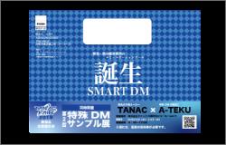 smart_dm